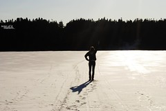 (kaitlin ryan) Tags: trees shadow sky ice water newfoundland pond pretty paradise blus rtound