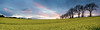 Panoramic view... (Chee Seong) Tags: uk sunset sky panorama cloud plant tree field canon landscape scotland spring farm lee rapeseed westlothian canon1740mm 5dm2 sgnd