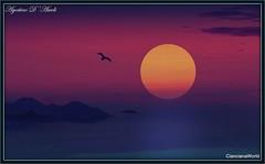 Volo libero - Febbraio-2017 (agostinodascoli) Tags: art digitalart digiatalpainting texture sunset cianciana sicilia nikon nikkor nature agostinodascoli cielo mare sole photoshop photopainting landscape paesaggi creative colore fullcolor