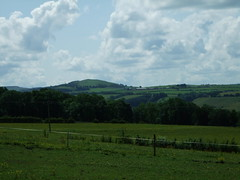The Clyde Valley (Elizmar) Tags: green nature landscape scotland countryside walk lanarkshire clydevalley