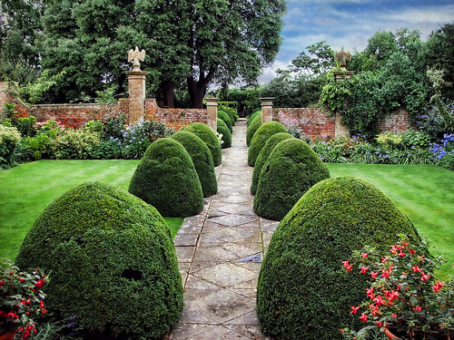 Tintinhull Gardens, Somerset by sminky_pinky100 (In and Out)