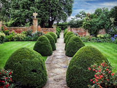 Tintinhull Gardens, Somerset (sminky_pinky100 (In and Out)) Tags: uk trees england heritage tourism beautiful topiary europe formal somerset historic nationaltrust pathway walledgarden texure hedges blueribbonwinner personalbest tintinhullgarden omot eyejewel