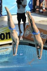 Fratelli Marconi Nicola e Tommaso (gongolo) Tags: roma sport diving piscina nuoto tuffo foroitalico trampolino sincro tuffatore tommasomarconi trampolino3metrisincrouomini nicolamarconi mondialidinuotofinaroma09