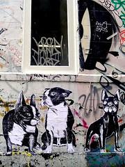 french bulldogs in london (Suriani Art) Tags: dog chien streetart london pasteup art animal poster drawing wheatpaste bulldog dessin cachorro shoreditch londres bricklane desenho suriani surianii