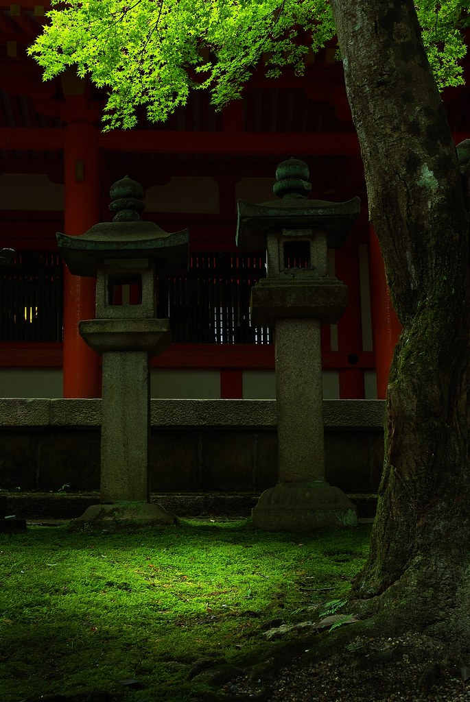 The Light at the Kasuga-Shrine