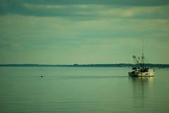 Harbor River Shrimping 3 (kalmiakid) Tags: beach sunrise dolphin dunes babyturtles shrimping seaturtles seaoats shrimpboat shrimpboats huntingisland maritimeforest seaislands harborriver