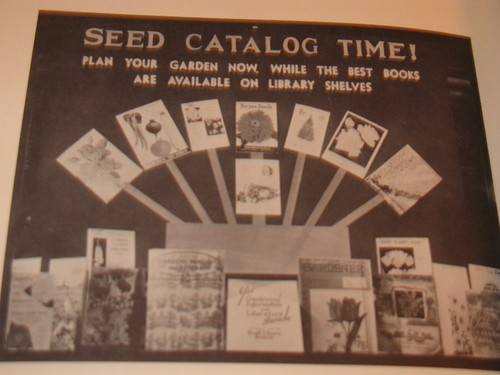 Seed Catalog Time!