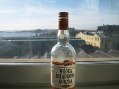 Mmm - polish spiced honey vodka