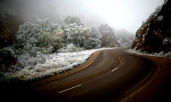 Highway 24 (didnotspillcoffee) Tags: mountains freezingfog landscape colorado paisaje coloradosprings canon5d icecrystals cordillera notsnow manitousprings highway24 didnotspillcoffee 55mmnikkoraisf12