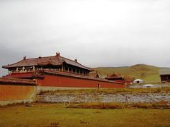 P9182104 (gvMongolia2009) Tags: mongolia habitatforhumanity globalvillage