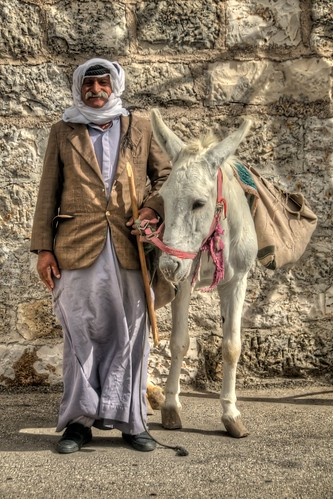 An Arab and his Donkey