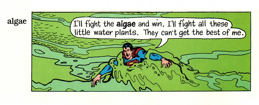 (Superman: 'I'll fight the ALGAE and win. I'll fight all these little water plants. They can't get the best of me.')