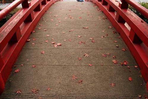 紅葉の小國神社(その2)