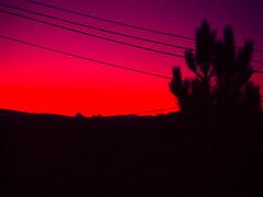 (marcos rv) Tags: red espaa arbol atardecer rojo tramonto paisaje cielo 2008 albero rosso dicembre diciembre ourense orense entrambosrios entrambosros galiciaourense
