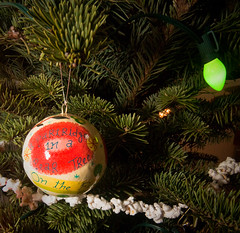 Partridge in a Pear Tree (photomato) Tags: christmas xmas holiday tree bulb lights tn decoration grand ornaments fir trimming c9 c7 12daysofchristmas