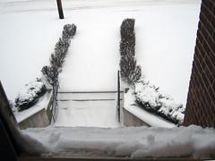 Snow storm 2009, Freeport, Long Island, New York (Oquendo) Tags: new york winter snow storm island long village tormenta invierno freeport nueva nieva