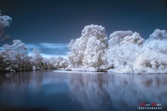 ...Where is Frosty? (SpaceCadet37) Tags: longexposure blue trees sun white snow reflection water clouds canon ir day tripod sydney australia nsw infrared spacecadet parramatta canon30d hoyar72filter anawesomeshot theunforgettablepictures mariobekes mariobekesphotography