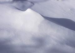 DSCF1713 (dmixo6) Tags: snow canada abstract weather muskoka flakes 2009 drift dugg dmixo6