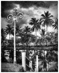 Street Light (ulli_p) Tags: street friends light sky urban blackandwhite bw lake reflection art texture nature water beautiful clouds landscape thailand pond friend asia southeastasia streetphotography best palmtree textured cloudysky cloudscapes isan artisticexpression aworkofart blackwhitephotos cloudshot anawesomeshot flickraward texturedphoto canoneos450d imagesofharmony bwartaward earthasia thebestshot spiritofphotography bestflickrphotography totallythailand artofimages exoticimage mygearandme