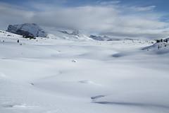 Sunshine Meadows (MetallYZA) Tags: 2017 canada banff sunshinevillage winter hiver snow neige mountains montagnes rockies rocheuses snowshoeing raquettes alberta