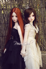Rowan & Eileen - DOT Shalls (-Poison Girl-) Tags: white black butterfly dress dot sd bjd dollfie superdollfie rowan eileen mayfair poisongirl shall fer dreamofdoll balljointeddoll dotshall shalls blackfer rowanmayfair