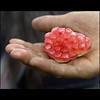 I give you my heart… (NaPix -- (Time out)) Tags: friends woman black macro fruit canon yummy hand heart bokeh pomegranate vietnam explore emotions sapa hmong explored hbw napix igiveyoumyheart…
