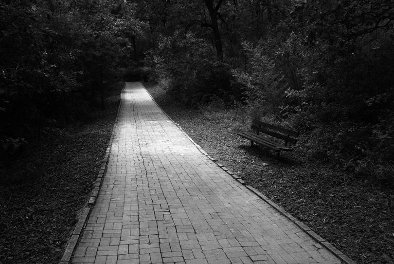 un descanso en el camino