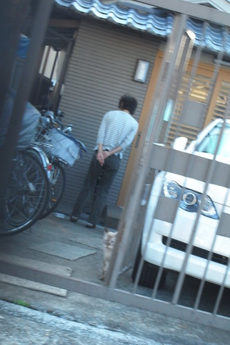 Today's Cat@20090918