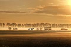 Olifantshoek (Reografie) Tags: mist holland sunrise nederland hdr landschap myst rhoon 25faves albrandswaard olifantshoek nibbie reografie