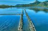 Salinas del Rasall (marathoniano) Tags: parque españa naturaleza nature landscape spain natural paisaje salinas reflexions cartagena sal abigfave marathoniano rasall