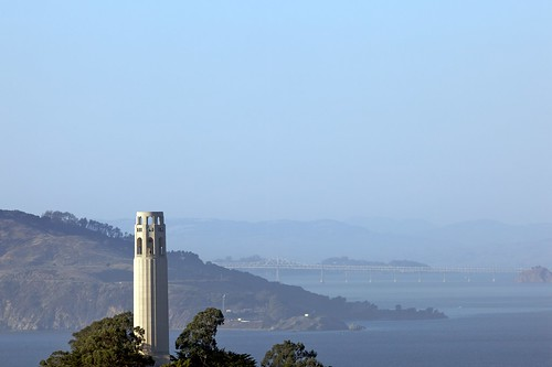 300 mm Of Coit