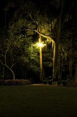 Lone Star (pea g.) Tags: longexposure trees wedding light tree night dark landscape outdoors lights star florida outdoor bricks spanishmoss mitchell tallahassee albright dorothybovenpark longshutterrelease cityoftallahasseeparksrecreationdepartment