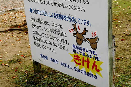 More Deer Sign