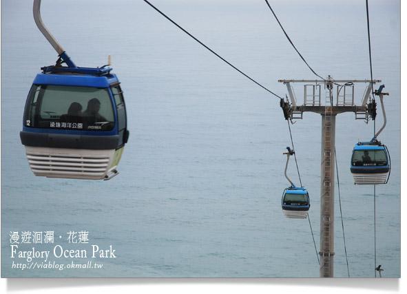花蓮海洋公園一日遊29