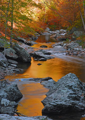 Golden River (P. Oglesby) Tags: autumn trees color tennessee 1001nights thehighlander godlovesyou blueribbonwinner coth supershot greatsmokymountainsnp theunforgettablepictures yourwonderland 1001nightsmagiccity photocontesttnc10