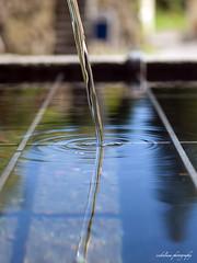 """""""waterline"""" bokeh (scubaluna) Tags: 50mm schweiz switzerland bokeh olympus distillery waterline e510 wasserstrahl scubalunaphotography"""
