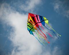 Fly away (jovni) Tags: kite hsm soundtrackmonday