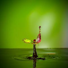 Venus Trap (escape_the_paradigm) Tags: water drop splash abstract strobist