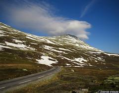 20160606_1 Road swooping towards Gaustatoppen (elevation 1883 m) | Near Rjukan, Norway (ratexla) Tags: ratexla'snorwaytrip2016 norway 6jun2016 2016 canonpowershotsx50hs norge scandinavia scandinavian europe beautiful earth tellus photophotospicturepicturesimageimagesfotofotonbildbilder europaeuropean summer travel travelling traveling norden nordiccountries roadtrip wanderlust journey vacation holiday semester resaresor landscape nature scenery scenic ontheroad sommar gaustatoppen rjukan road roads mountain mountains photosbyjosefinestenudd ratexla snow favorite unlimitedphotos almostanything