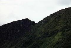 Machu Picchu 026