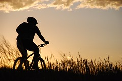 Riding Into the Sunset (MichaelBarrow) Tags: sunset bicycle silhouette golden colorado glow mountainbike riding biker lakewood rider magichour greenmountain mountainbiker yourcountry