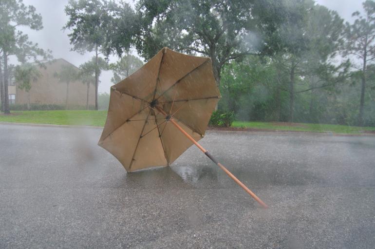umbrella_0023