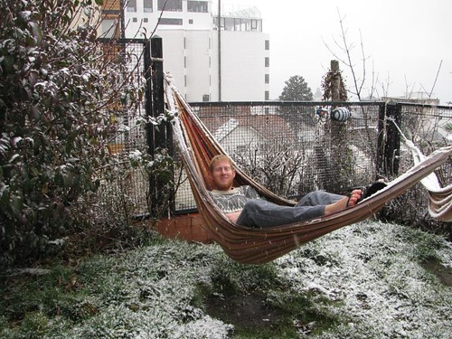 hammock in the snow