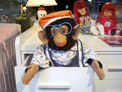 bad-vision-monkey