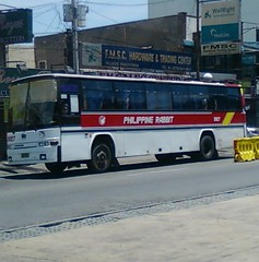 Stand up and hop Philippine Rabbit 3127 (Ɲoctis lƱcis cælum) Tags: city bus rabbit lines market euro pangasinan provincial philippine tarlac villasis ndpc kuneho
