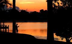 [フリー画像] [人物写真] [一般ポートレイト] [釣り人] [シルエット] [夕日/夕焼け/夕暮れ] [橙色/オレンジ]     [フリー素材]