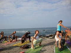 Chakra Vinyasa Teacher Training module (mockerfab4) Tags: ocean beach yoga training hawaii teacher palmtrees health bigisland kona chakra module wellness kailuakona yogateacher vinyasa trainingmodule yogatraining chakravinyasa yogahale yogamodule