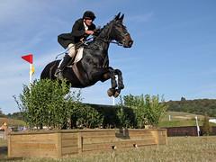 A Silver Fox... (Colonel Killgore) Tags: horse man black male jump competition wideangle jockey rider leap equestrian silverfox loh