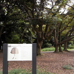 Mizumoto Park 02