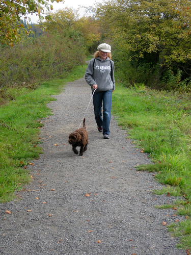 On the trail with ewok